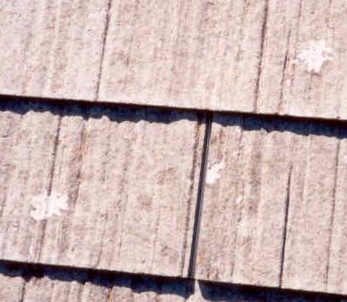 Masonite Roofing Amp Colorado Springsu0027 Home And